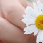 La importancia de saber pedir perdón